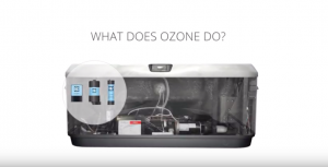 Ozone Effects
